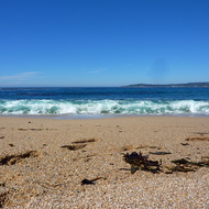 A beach-level view on a gorgeous day in Monterey County, California.