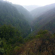 Looking onto the Big Sur River from the Pine Ridge Trail in the Ventana Wilderness.