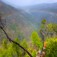 A rainbow as viewed from the Pine Ridge Trail on a rainy day in the Ventana Wilderness.