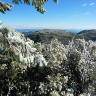 Part of the summit of Mount St. Helena with a dusting of snow.