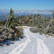 Looking down a road from one of the Mount St. Helena peaks in snow.