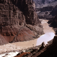 A view of the Colorado River at Hance Rapid from Hance Trail.