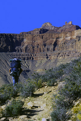 Thumbnail image ofA backpacker in the Grand Canyon.