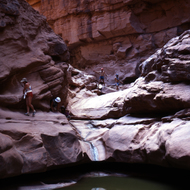 Private river rafters hiking up a Colorado River side canyon in Grand Canyon National Park.