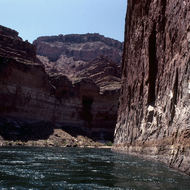 A scenic stretch of the Colorado River through the Grand Canyon.
