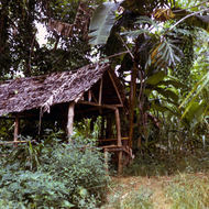 A Yap hut in the 1970s.
