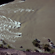 Tied up whitewater rafts on the Colorado River from above.