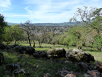 Thumbnail image ofA view of Sonoma in Spring from the Montini Open...