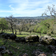 A view of Sonoma in Spring from the Montini Open Space Preserve.