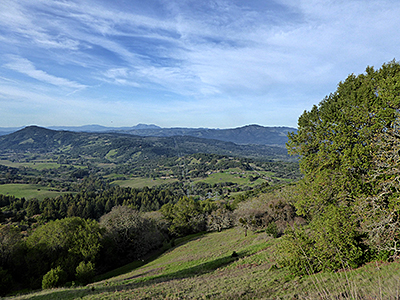 Thumbnail image ofA view of Bennett Valley from North Sonoma Mountain...