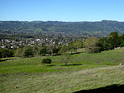 Thumbnail image ofA view of lower Sonoma Valley in Spring from the...