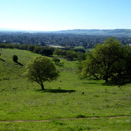 A view of lower Sonoma Valley in Spring from the Montini Open Space Preserve.