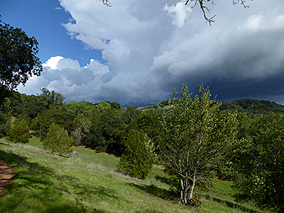 Thumbnail image ofStorm clouds seen from the Montini Open Space...