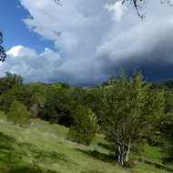 Storm clouds seen from the Montini Open Space Preserve in Spring.