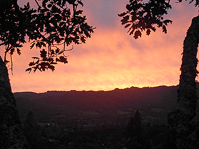 Thumbnail image of Sunset over Sonoma Valley, from a treehouse at...