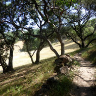The Holstein Hill Trail on the Montini Open Space Preserve.