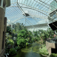 Inside the Gaylord Opryland Resort and Convention Center.