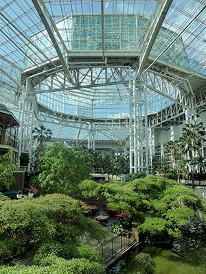Thumbnail image ofInside the Gaylord Opryland Resort and Convention...