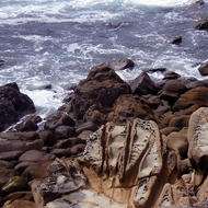 A coastal sandstone rock exhibiting a pattern of erosion called Tafoni.