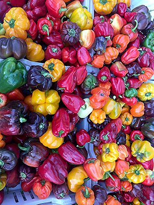 Thumbnail image ofA variety of peppers on display at a farmers market.