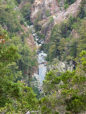 Thumbnail image of A view of Big Sur River from the Pine Ridge Trail...