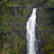 The top section of Akaka Falls on the Big Island of Hawai'i.