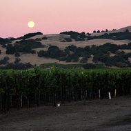 A Sonoma Valley moonrise.