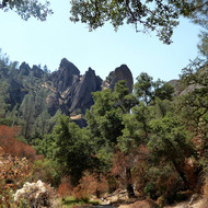 Rock outcroppings at Pinnacles National Park in California.