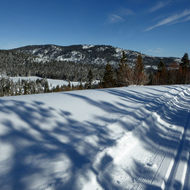 A cross-country ski trail in the Sierra Nevada Mountains.