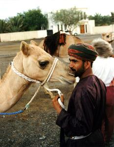 Thumbnail image ofOmani with Camels - Al Amahdi, Oman