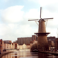 Windmill - Schiedam, the Netherlands