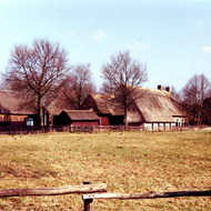 Dutch Farm - Drenthe Province, the Netherlands