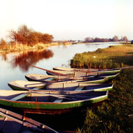 Row Boats - Stompwijk, the Netherlands
