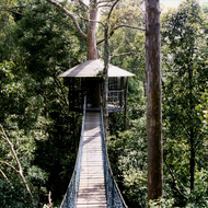 Treetop Rope Bridge - Sungai Liang Nature Park, Brunei