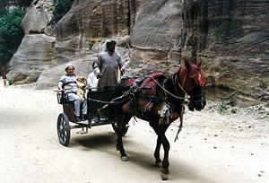 Thumbnail image ofWadi Musa - Petra, Jordan
