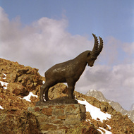Mountain Goat Statue Near Corviglia - St. Moritz, Switzerland