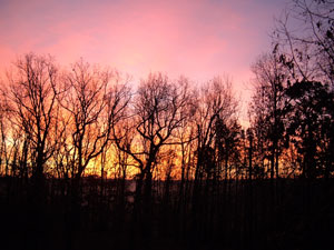 Thumbnail image ofSunrise in the Ozark Mountains.
