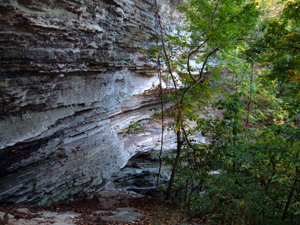 Thumbnail image of An Ozark wilderness cliff.