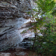An Ozark wilderness cliff.