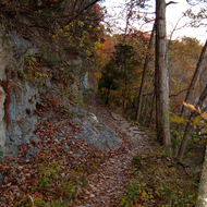 A trail in the Ozarks.