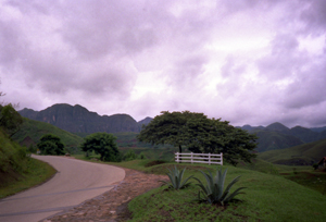 Thumbnail image ofAmazing Purple Clouds on the mountain road to...