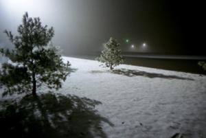 Thumbnail image ofWinter at Night