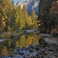 Yosemite, stream reflections in the Merced River.
