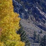 June Lake loop, autumn colors.