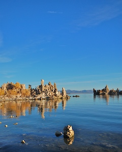 Thumbnail image of Mono Lake tufa sculptures just after sunrise.