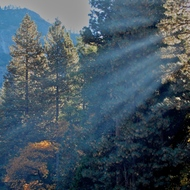 Yosemite morning sun rays.