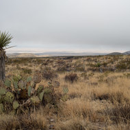 Guadalupe Mountains National trail to Williams Ranch.