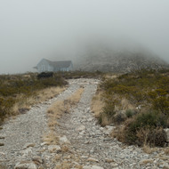 Long foggy road to Williams Ranch.