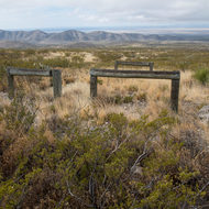 Cattle pens at Williams Ranch.