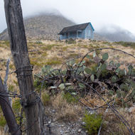 Fencing at the edges.